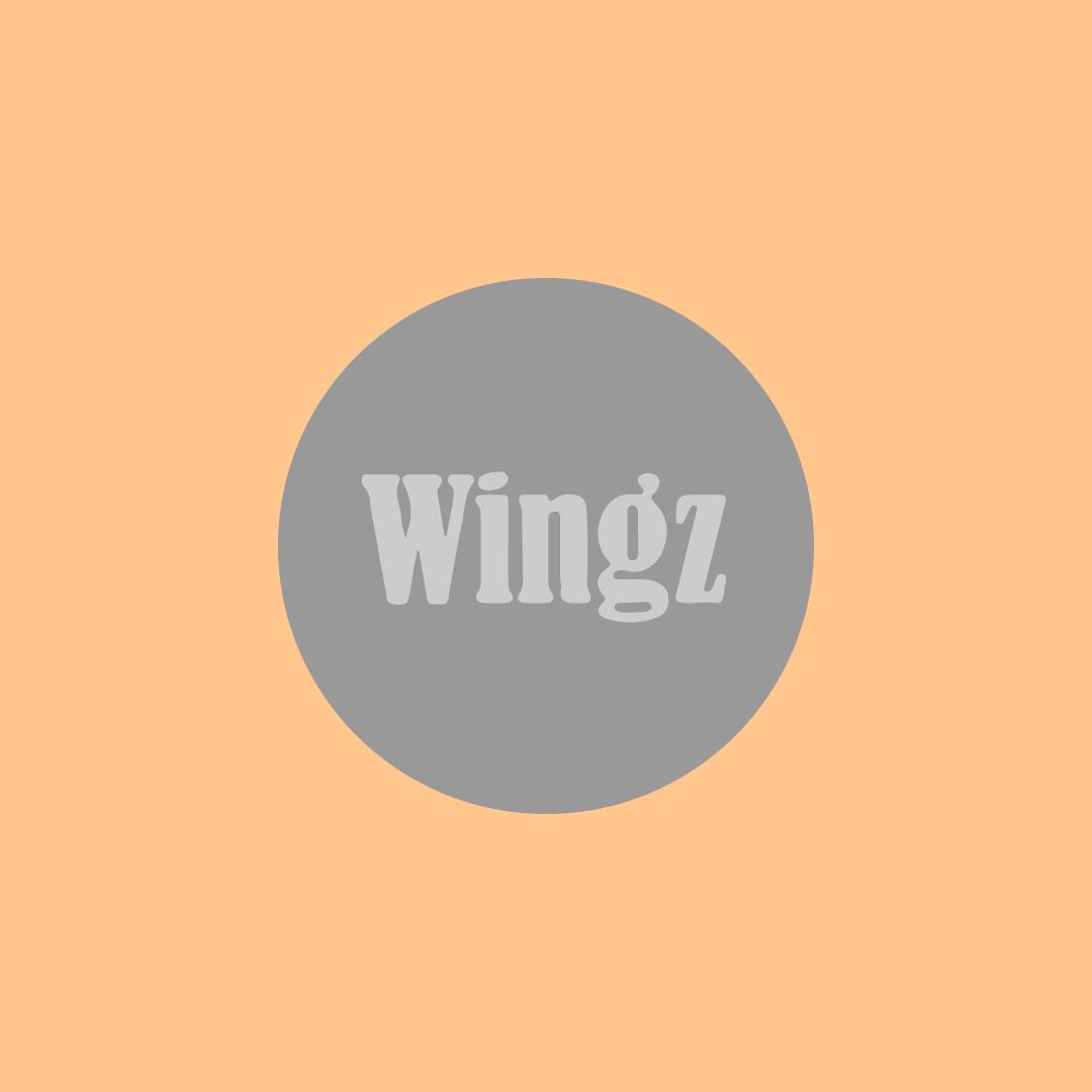 Image Wingz Malaysia